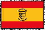 BANDERA ESPAÑA RESERVISTAS (30515)