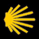 sticker scallop transparent-yellow