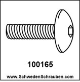 Schraube wie # 100165