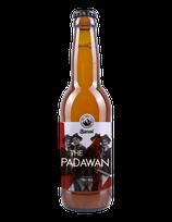 The Padawan