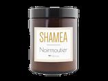 NOIRMOUTIER - Mimosa