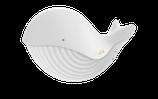 Coffret baleine 1