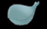 Coffret Baleine 4