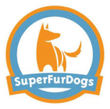 Chillcoat Classic (Hundebademantel) von SuperfurDogs