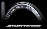 ASPITE PRO WET(クリンチャー)