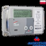 Промышленный теплосчетчик Apator LQM-III  FAUN ДУ25-300