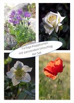 Kartenset Blumen VI