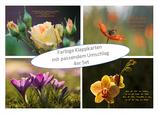 Kartenset Blumen IV