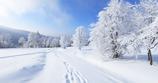 Winterexkursion Vogtland