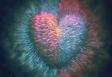 Singleblick Erfahrungen in der Liebe