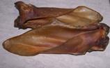 50 Rinderohren mit Muschel