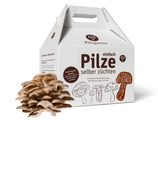 Pilz-Kit (einfach Pilze selber züchten)