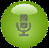 LG E975 Reparatur Mikrofon
