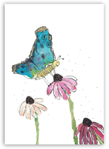 Nr.58 SCHMETTERLING