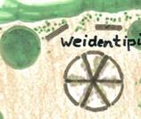 Weidentippi