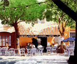 Café du Cours. LAN03_Papier.