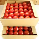 野口とまと フルティカ(バラ詰め2.1kg×2箱)