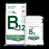B Apport Vita B12 Erba Vita