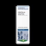 Centella Asiatica Estratto Fluido Erba Vita