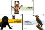 Oefenboekje 1, 2 en 3 van werkwoordspelling voor de bovenbouw