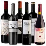 Südamerika Weinpaket Best of Tannat