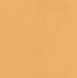 Wachsplatte Kamel 20x10cm