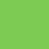 Wachsplatte hellgrün