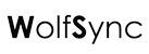 WolfSync Backup - 1 Jahr