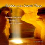 Alyosha Ryabinov, Hidden in the Secret Place
