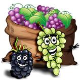 Grape Dream