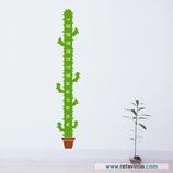 Infantiles / Medidores / Cactus sonriente