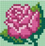 1PP2B Rose