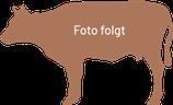 Kompletter Rücken (8 –12 kg)