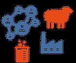 Schulung - Nachhaltigkeit im Textilsektor