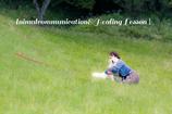 アニマルコミュニケーション&ヒーリング1・2