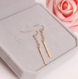 Simple Gold Long Chain Earrings