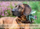 Jagdhundekalender 2019 DIN A3 - Ausverkauft