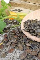 BIO Kürbiskerne naturbelassen