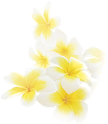Elixir Fleur d'Oranger Körperöl