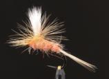 Parachute Light Orange