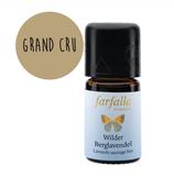 Lavendel/Wilder Berglavendel bio Grand Cru - Ätherisches Öl