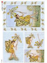 ライスペーパー  Fairies-0045
