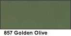 Vallejo Golden Olive Matte