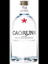 Gin Caorunn 70cl