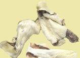 RIND | Hautstreifen mit Fell, kurz