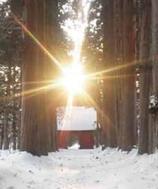 2月4日(火) 6:30~「立春の杉並木と朝カフェタイム」参加申込み