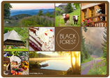 Postkarte Black Forest Dutzend braun