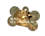 MEDAILLE OS POUR CHIEN