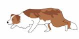 Dein Hund als Vektorgrafik (für private Zwecke)