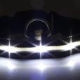 LED Halsbänder